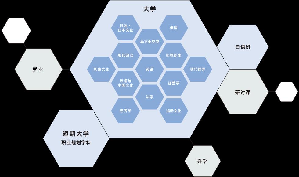 札幌大学の学び